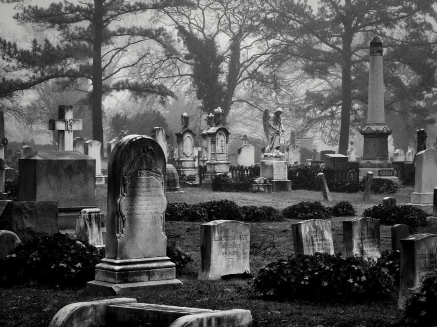 Spooky, Creepy, Scary Halloween Movies