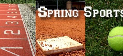 Sports Spring Fever