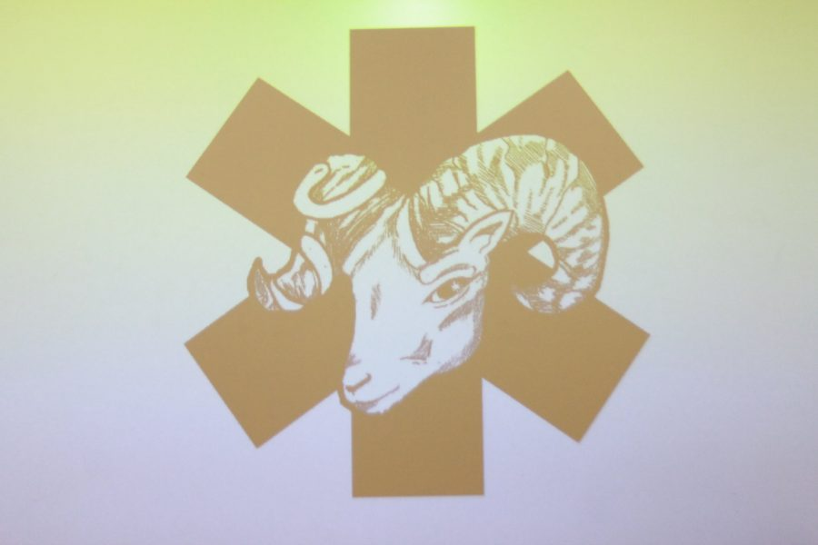Ram's Anatomy