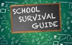 School Survival Guide: Freshman Year