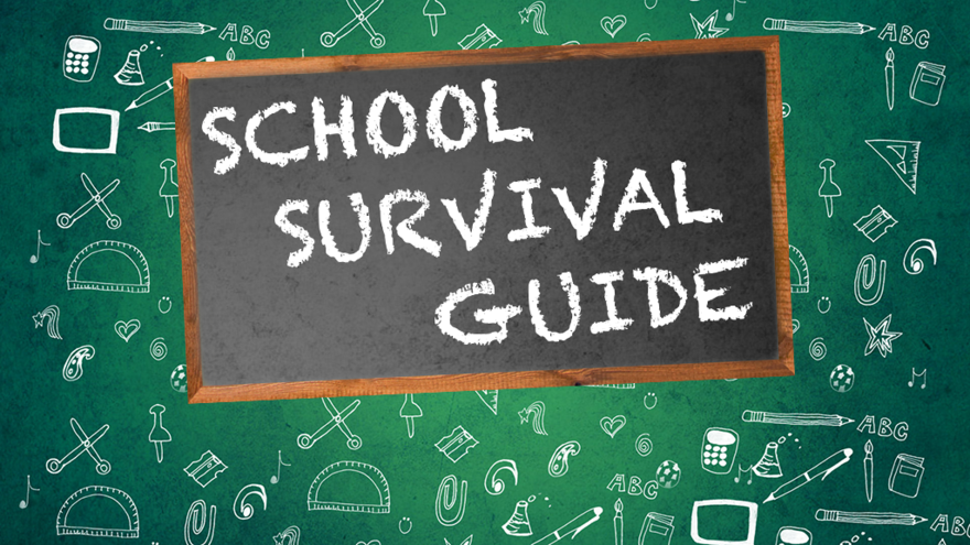 School Survival Guide: Freshman Year