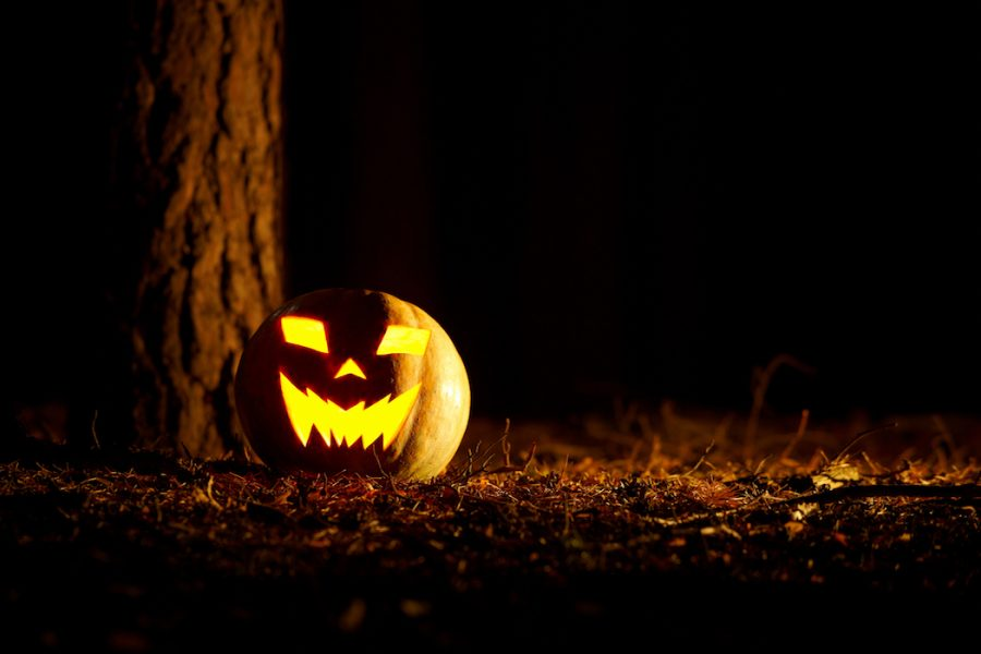 Jack O' lantern in midnight forest.