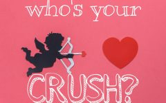 Who's Your Crush?