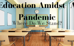 Education Amidst a Pandemic: Where Do We Stand?